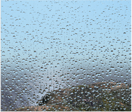 Rain on the windscreen